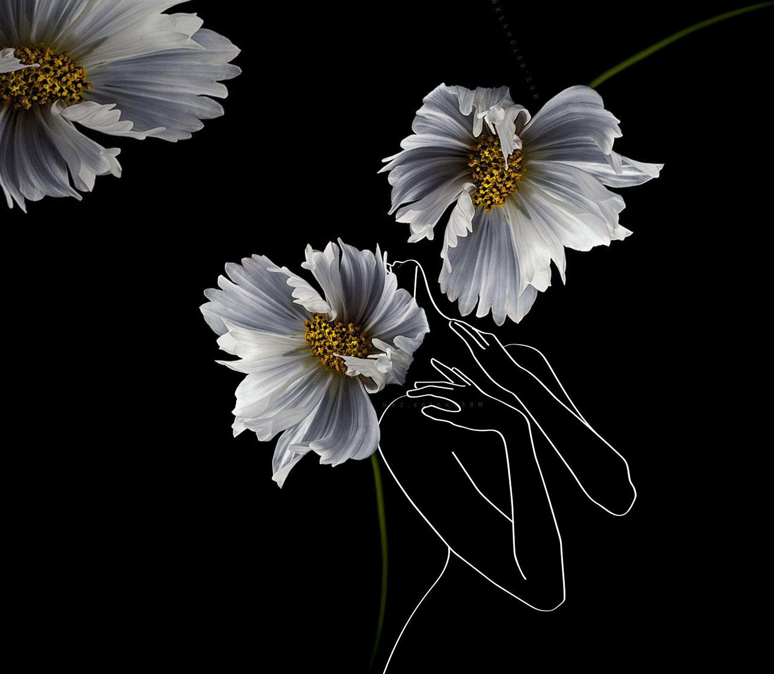 tapet negru cu flori